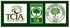 tree care associations