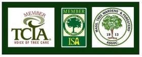 tree care associations